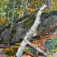 Ledge with Fallen Birch