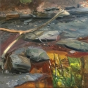 Creek with Branch and Reflections